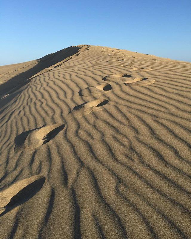 Dune walking in Gran Canaries