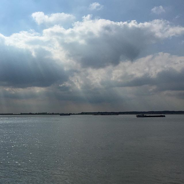 River Scheldt on a sunny afternoon